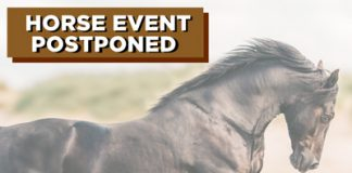Horse Event Postponement Coronavirus