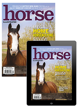 Horse Illustrated Combo Edition
