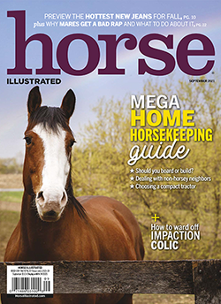 Horse Illustrated Print Edition