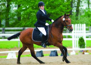 Horse and rider competing in dressage.