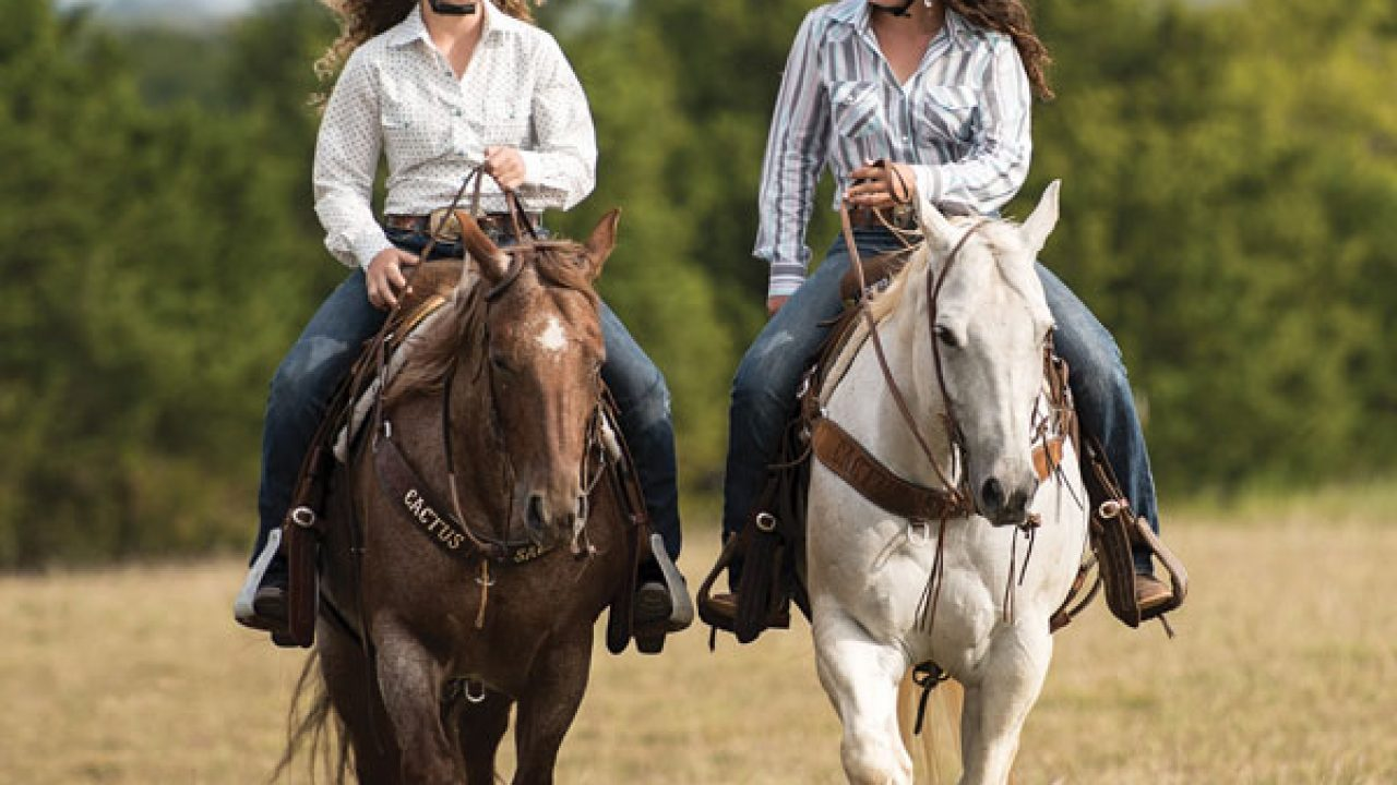 Trail Riding Tack And Gear Trail Essentials Horse Illustrated