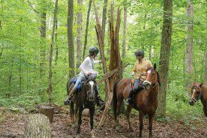 Mounted orienteering - Riders examine a landmark.