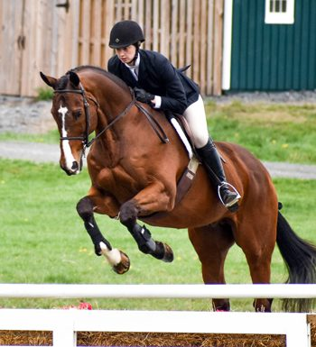 ANRC National Equitation Championships