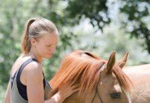 Appalachian Trainer Face Off
