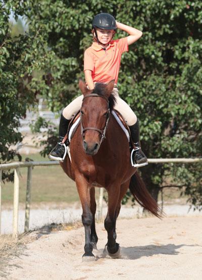 Horse Balancing Exercises