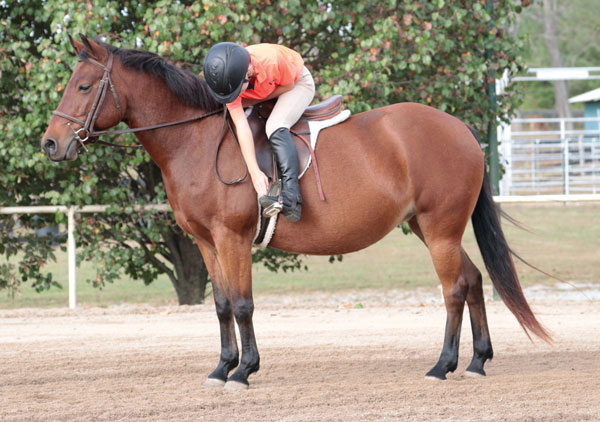 Toe Touches - Balancing in the Saddle