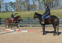 Career as a Barn Manager Teaching a Riding Student