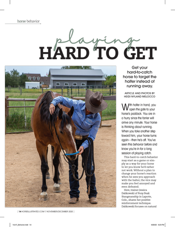 Get your hard-to-catch horse to target the halter instead of running away.