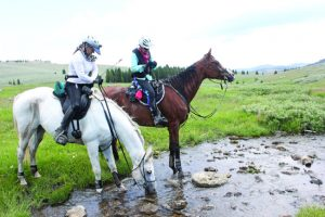 Horses and riders on Big Horn 100 trail.