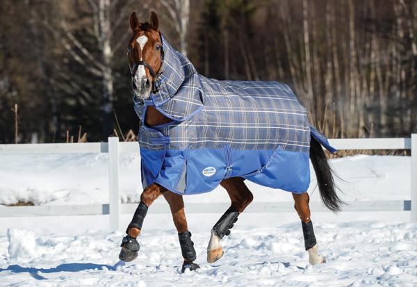 Blanket on a Wider Horse