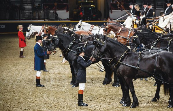 Royal Agricultural Winter Fair