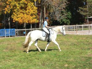 Horse fiction author riding a horse.