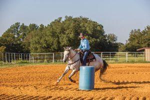 Horse barrel riding in arena.