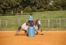 Horse barrel riding.