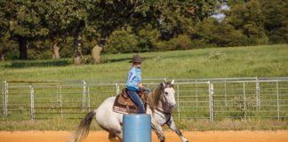 Horse barrel riding.