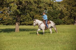 Riding horse near woods.