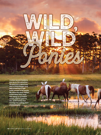 The ponies of Chincoteague and Assateague Islands make their famous swim every July.