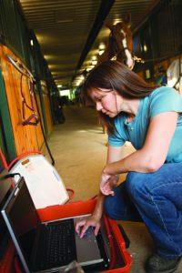 Vet visiting horses at the barn.