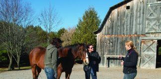 People standing outside of barn with horse.