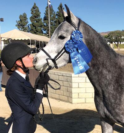 Christina Povo with Mahdi - Arabian Horse at Show