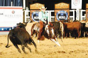 Cutting horse in arena.