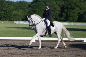 Horse and rider in competition arena.