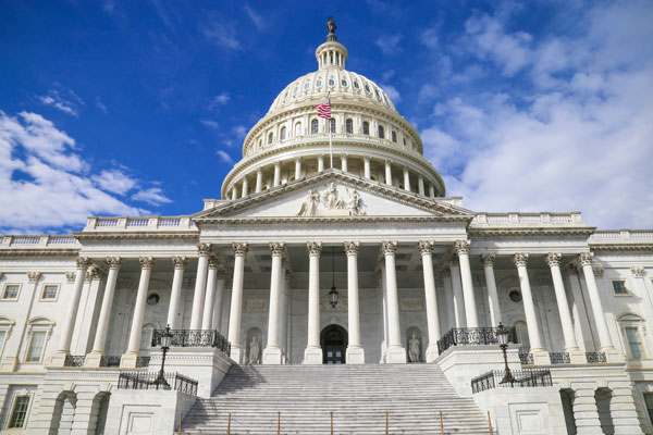 Washington D.C. Congress - Preventing Animal Cruelty and Torture Act