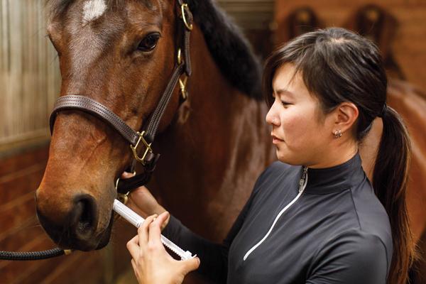 Deworming a Horse