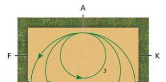 Diagram - Dressage Exercise Circle