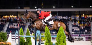 Doug Payne and Vandiver - Tokyo Olympics Eventing Show Jumping