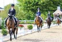 Dressage Seat Equitation Young Riders