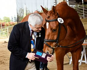 Dr. Mike Tomlinson with Copa Cobana - Summer Horse Health Care Tips