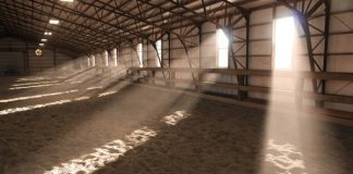 Dusty Arena and Respiratory Disease in the Horse