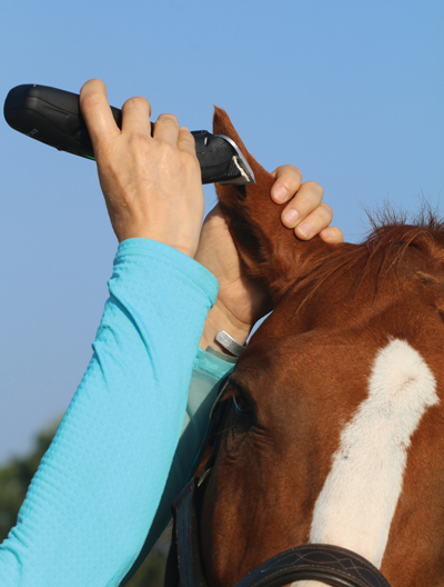 Clipping ears