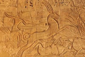 Egypt - Ramses III - Chariot - Horse Art