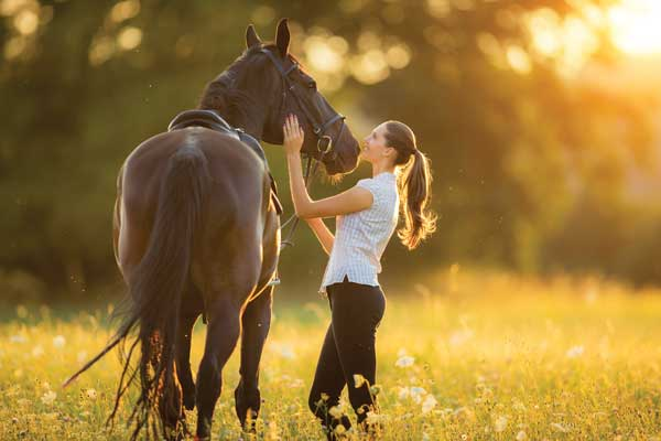 Horse and Woman - Equine Emotional Intelligence