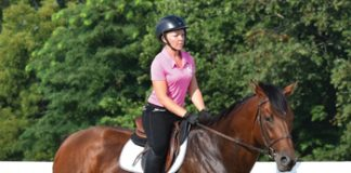 Retraining a Thoroughbred
