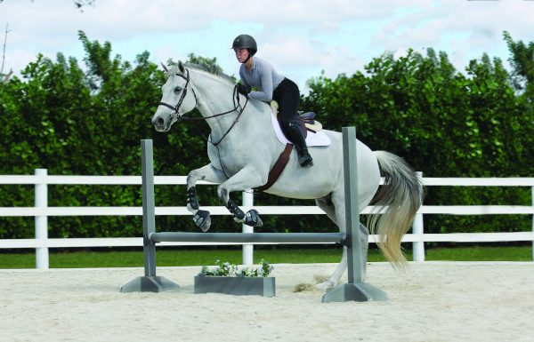 Rider exercises over poles or low jumps.