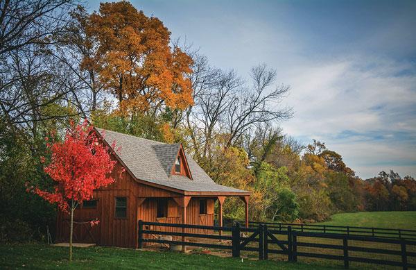 Fall Farm Cleanup