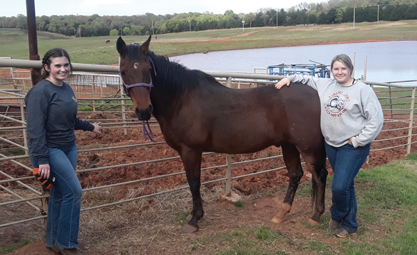 Carrie and McKayla Hunt with Ace, their foster horse