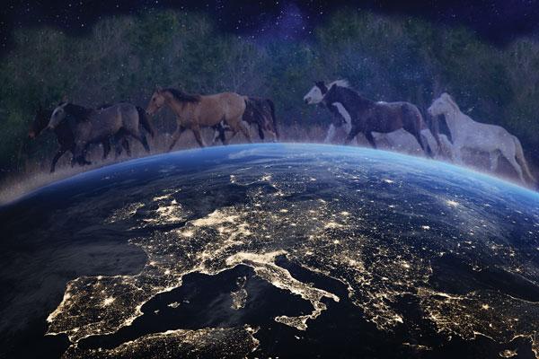 Global Mustangs - Image from Sandra Williamson