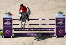 FEI European Championship in Show Jumping