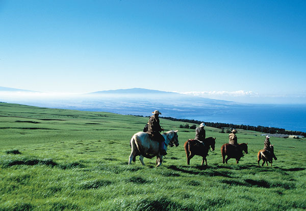 Riding Vacation Destination - Hawaii