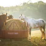 Tarter Round Bale Feeder