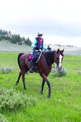 Meet My Endurance Horse RGS Just Believe and Jessica Torres