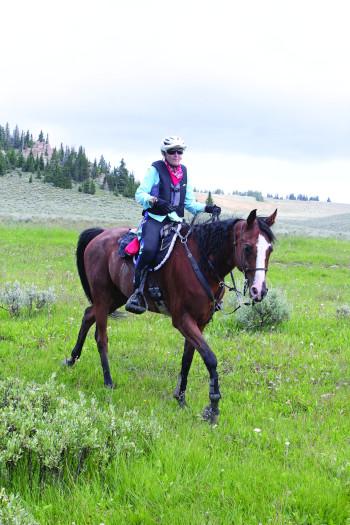 Suzanne Hayes riding Sanstormm.