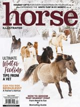 November/December 2020 Horse Illustrated