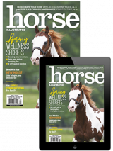 Horse Illustrated March 2021 Combo
