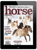 November/December 2020 Horse Illustrated Digital Issue