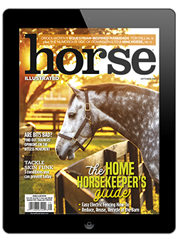 September 2020 Horse Illustrated Digital Issue